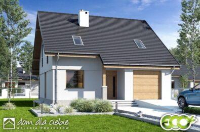 Projekt domu Biała